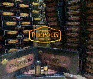 propolis1