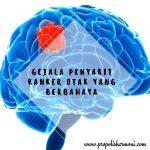 Gejala Penyakit Kanker Otak Yang Berbahaya
