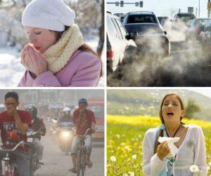 Alergiii