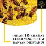 Iniliah 10 khasiat madu lebah yang belum banyak diketahui