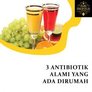 3 Antibiotik alami yang ada dirumah